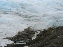 冰川冰细节在阿根廷。 免版税库存照片