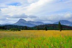 冰川国家公园在夏天 免版税库存照片
