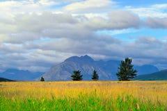 冰川国家公园在夏天 图库摄影