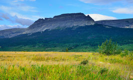 冰川国家公园在夏天 免版税库存图片