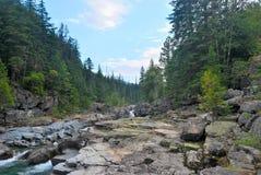 冰川国家公园在蒙大拿 免版税库存图片