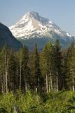 冰川国家公园视图 库存图片
