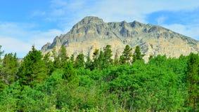 冰川国家公园风景在夏天 图库摄影