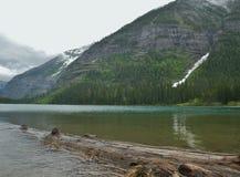 冰川国家公园,雪崩Gulch湖 库存照片