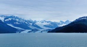 冰川在学院海湾在阿拉斯加 库存图片