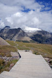 冰川摇石国家公园通过s 免版税图库摄影