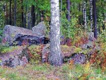 冰川期石头  免版税图库摄影