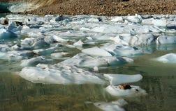 冰川湖 免版税库存照片