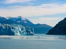 冰川特雷西胳膊海湾阿拉斯加 库存图片
