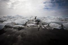 冰川盐水湖 库存照片