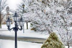 冰川覆盖的树和街灯在春天冻雨以后 图库摄影