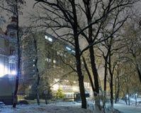 冰川覆盖的结构树在晚上城市公园。 库存图片