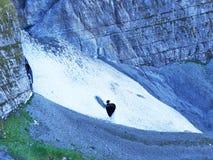 冰川遗骸在Glarnisch下上面的由湖Klontalersee的 库存图片