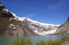冰川, Skjolden,挪威 免版税库存照片