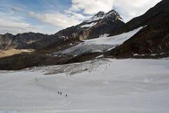 冰川trift 免版税库存图片