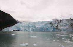 冰川Upsala 库存照片