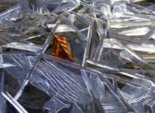 冰形式 库存照片