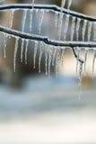 冰暴 库存图片