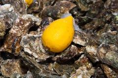 冰柠檬牡蛎 免版税库存图片