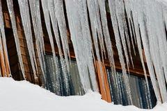 冰柱在黑森林,德国里 库存图片