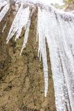 冰柱水晶在冻石头 室外和冬天 图库摄影