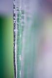 冰柱背景  免版税库存照片