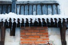 冰柱围住木 免版税库存照片