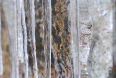 冰柱 图库摄影