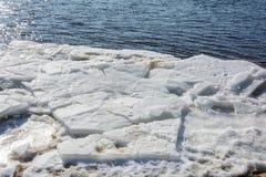 冰汇聚从河的在早期的春天 免版税库存图片