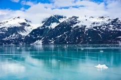 冰河海湾在阿拉斯加,美国 免版税库存图片