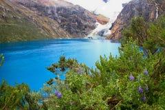 冰河联邦机关拉古纳Rajucolta,山脉布朗卡,秘鲁 库存图片