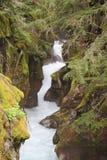 冰河融解在雪崩峡谷 库存图片