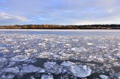 冰浮动在河 免版税图库摄影