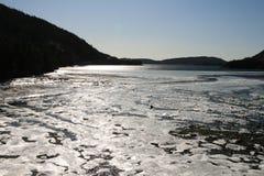 冰海运 免版税库存照片