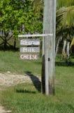 冰淇凌、牛奶和乳酪 图库摄影