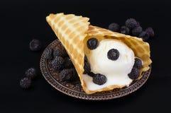 冰淇凌与在葡萄酒板材的奶蛋烘饼锥体 库存照片