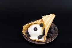冰淇凌与在葡萄酒板材的奶蛋烘饼锥体 图库摄影