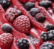 冰淇凌用新鲜的结冰的莓果 免版税库存图片