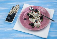 冰淇凌用草莓、薄菏和冰在黑暗的金属盘子 顶上的射击 库存照片