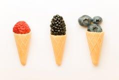以冰淇凌的形式,成熟莓果被提出 免版税库存照片
