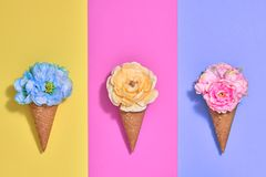 冰淇凌设置与花 最小的时尚 免版税库存照片