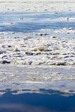 冰漂泊 免版税库存图片