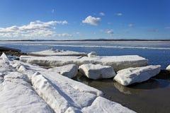 冰熔化的海运 库存图片