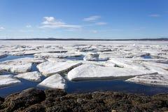 冰熔化的海运 免版税库存图片