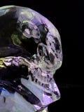 冰玛雅人头骨 库存照片