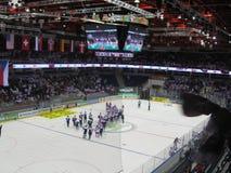 冰球世界冠军米斯克2014年 库存图片