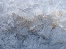从冰的冬天样式 库存照片