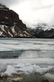 结冰的弓湖,亚伯大,加拿大 免版税图库摄影