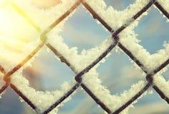结冰的样式,冬天 免版税图库摄影