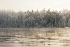 结冰的河 库存图片